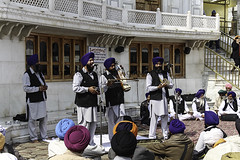 A musical troupe perfoming religious songs in front of Akal Takht (Ashish A) Tags: india building canon buildings religious temple asia religion sikh devotee devotees amritsar digitalslr sikhism goldentemple musicalinstruments whitebuilding canoncamera religioussymbol musicalperformance peoplesitting sittingpeople akaltakht goldentempleinamritsar canon650d musicaltroupe religioussongs canont4i peoplewearingturbans peopleinsidegoldentemple peoplelisteningtosongs