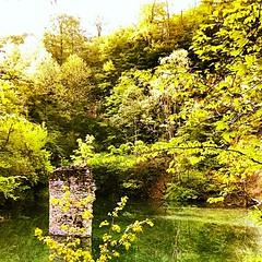 Lac bleu (Thomas Brossard) Tags: wood blue lake tree green tower abandoned water nikon secret lac quarry