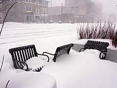 Blizzard Morning 3 (mahler9) Tags: city winter cambridge urban snow storm chair massachusetts january samsung blizzard juno jaym 2015 galaxys4 mahler9fotos bostonwinter2015