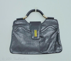 Vintage Handbag Purse (thisbluebird) Tags: purse handbag vintagehandbag framebag vintagepurse vintageclothesthisbluebird
