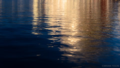 Gold (briantolin) Tags: ocean sea canada reflection water vancouver gold bay britishcolumbia reflect falsecreek
