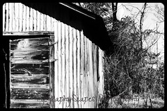 IMG_3856 (Naturally Forgotten Photography) Tags: abandoned oklahoma barn ghosttown picher abaondoned