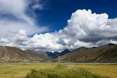 -132.jpg (Fzz7) Tags: china tibet d800  nikon1635f4 summer2015