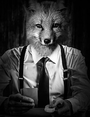 Fox playing poker (Adam Hopkins) Tags: portrait bw white playing black game animal photoshop manipulation poker fox