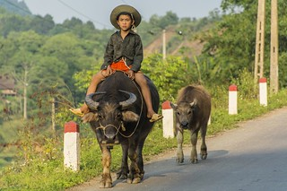 cao bang - vietnam 5