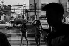 148/365 (Nico Francisco) Tags: street blackandwhite rain weather umbrella 365 366