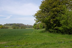 DSCF0416 (Appledorian) Tags: kent valley darent
