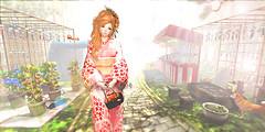 {amiable} Summer Japanese Yukata2016@the Chapter Four(50%OFF SALE). (nodoka Vella) Tags: four truth mesh sale sl event secondlife yukata kimono chapter 50off amiable nodoka 2016 tcf nostargic {amiable} nodokavella