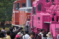 Pink SL at Wakasa Railway (35) (double-h) Tags: sl tottori jnr steamlocomotive c12   eos6d   pinksl wakasarailway  c12 ef100400mmf4556lisiiusm c12167 wakasastation classc12 c12 sl