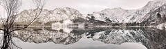 Offensee & Totes Gebirge (subliminalnonsense) Tags: schnee winter panorama mountain lake snow alps reflection nature austria sterreich europa natural outdoor snowy alpen alpinelake landschaft obersterreich snowylandscape snowymountains gebirge winterlandscape highres ebensee 2016 salzkammergut scenicview upperaustria panoramicview totesgebirge offensee gewsser alpinescenery alpineview alpineregion mountainouslandscape canoneos7d