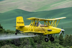 Crop Duster (DeniseDewirePhotography) Tags: yellow plane washington spray fields biplane cropduster palouse steptoebutte