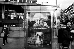 (archangelse) Tags: madrid spain dog man woman streetphotography reportage documentary xt1 fuji reflection