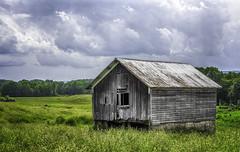 Old farm building (jsleighton) Tags: wood old trees sky ny field barn farm gray johnson decayed