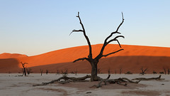 Deadvlie Pan - Namibia  (1 of 5) (jaytee27) Tags: deadvliepan namibia sanddunes naturethroughthelens