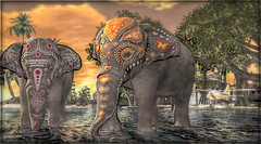 A walk with the Elephants. (MISS V ANDORRA 2016 - MISSVLA ARGENTINA 2017) Tags: nature animals place secondlife elephants itallstartwithasmile
