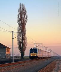 480 003 H-MVTR Traianus IC. 72 (...sneken a vonat) Tags: sunset train ic eisenbahn rail railway 480 72 003 mav suset traxx mv traianus vonat clak vast calatori zeleznice calator mozdony v48 vlaky trenuri 131201 vlacik 480003 ic72 trenur locationdorobanti 480003131201 1048003 v48003 railsunset