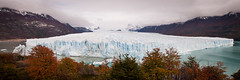 Barely got it all in (ckocur) Tags: patagonia ice southamerica argentina nationalpark glacier peritomoreno elcalafate icefield southernpatagonia