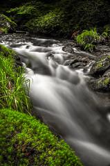Nant Dol-goch (Dolgoch Stream) (Celtic-Wanderer) Tags: river stream water watercourse movingwater longexposure slowshutter dolgoch gwynedd wales outdoors serene landscape nikon d5000