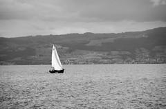 IMGP2067.jpg (Zeilenende) Tags: berg bodensee segelboot friedrichshafen