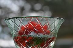 En skl blommer (@MarreAremann) Tags: glass glas fotosondag fotosndag fs160529