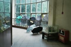 rainy day in Guangzhou (InSoManyWords) Tags: guangzhou china film 35mm rollei35 fujisuperia200