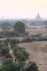 2016myanmar_0418 (ppana) Tags: bagan alodawpyay pagoda ananda temple bupaya dhammayangyi dhammayazika gawdawpalin gubyaukgyi myinkaba wetkyiin htilominlo lawkananda lokatheikpan lemyethna mahabodhi manuha mingalazedi minochantha stupas myodaung monastery nagayon payathonzu pitakataik seinnyet nyima pagaoda ama shwegugyi shwesandaw shwezigon sulamani thatbyinnyu thandawgya buddha image tuywindaung upali ordination hall