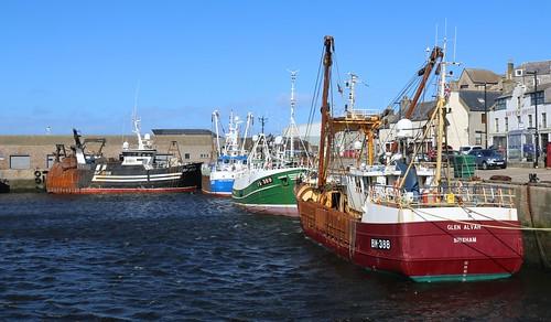 18th April 2016. Trawlers in Macduff Harbour, Banffshire, Scotland.