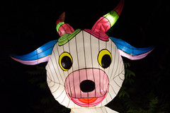 _DSC9658_2 (Elii D.) Tags: light fish flower animal night zoo monkey neon dragons lantern lampion dargon