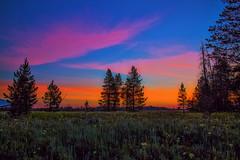 0J4A3687-hdrv2 (gotmyxomatosis69) Tags: trees colors field sunrise canon dawn grandtetons tetons hdr hdrsunrise teamcanon