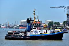 UNION 7 (dv-hans) Tags: portofrotterdam nieuwewaterweg tug harbour seagoingtug harbourtug maassluis maasvlakteii maasvlaktei europoort botlek nieuwemaas union7