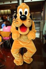 Pluto (sidonald) Tags: tokyo disney pluto greeting tokyodisneysea tds tdr tokyodisneyresort    horizonbayrestaurant