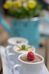 Tea for 3 (all for me) (Tracey Rennie) Tags: dessert bokeh chocolate raspberry pansies wateringcan mousse lacombe ellisbirdfarm
