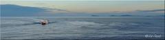 Serene LK297 (Ivan Reid) Tags: serene lk297 whalsay herring pelagic trawl trawling trawler shetland summer fishing mackerel supertrawler nets net fish tanks ropes lines harbour pier sunset sunshine calm season norway renamed havstl crew new vessel denmark skagen journey home berthed