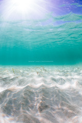 Underwater of a beach landscape (Robert Lang Photography) Tags: ocean travel blue shadow sea sunlight holiday seascape seaweed color green texture beach nature water vertical swim relax landscape sand aqua pattern underwater ripple australia nopeople calm aussie sunrays southaustralia raysoflight robertlang portlincoln seafloor eyrepeninsula stocksy stockphotographer robertlangportlincoln robertlangphotography wwwrobertlangcomau robertlangaustralia stocksyunited