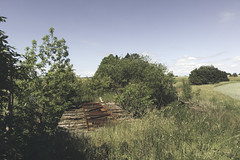 Trelleborg-Rydsgrds jrnvg (TRJ) (ickeliv) Tags: railroad bridge abandoned rural skne sweden decay railway disused sverige trelleborg trj jrnvg jrnvgsbro rydsgrds