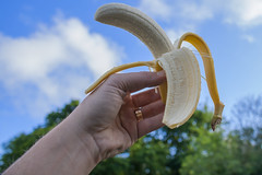 Av a Banana! (bobwight81) Tags: sony banana a100