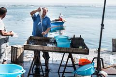 Fish market (ianclo) Tags: mare mercato pesce taranto tarantouscitafotografica