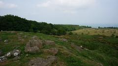 Clee Burf (Alec Paton) Tags: trees rocks shropshire treeline brownclee cleeburf