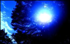 Blue Sun II (Josh Rokman) Tags: blue bluesky bluesun sunset nature outdoors nikond7000