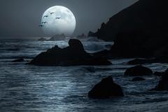 Once in a Blue Moon (byron bauer) Tags: ocean blue sea moon mist seascape painterly water birds fog night landscape haze rocks surf gulls byronbauer