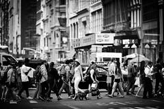 I Heart New York (Anna Kwa) Tags: street newyorkcity people usa newyork nikon traffic heart soul d750 always searching iheartnewyork my afsnikkor70200mmf28gedvrii annakwa