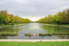 IMG_4601 (Irina Souiki) Tags: parcdesceaux france paris sceaux flowers nature parc park