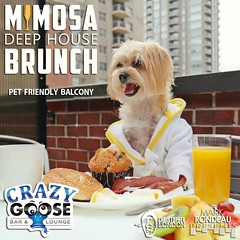 """Our outside covered balcony is pet friendly!  Get $10 bottomless mimosas every SUNDAY at Crazy Goose at our """"MIMOSA DEEP HOUSE BRUNCH"""" (789 6th Ave, on 6th & F)!  BRUNCH: 10am-3pm.  *Happy Hour starts @ 3pm; Last mimosas go out at 2:30pm.  See www.MRP.clu (markrondeaupresents) Tags: housemusic gaslampsd sdcc sdnightlife crazygoose sdsu usd crazygoosebar dogsofsandiego sdmusicscene dtsd sunday dogfriendlysd deephouse comeplay markrondeaupresents sundaybrunch mesacollege edmsd sdclubbing sd ucsd petfriendly sixonenine sandiego sdbrunch sdliving gaslamp sandiegodog mrp"""