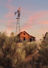 A Central Oregon Sunset (Angie Vogel Nature Photography) Tags: centraloregon homestead abandonedhomestead oldfarmhouse windmill sunset nature sagebrush pinkclouds oldwoodenstructure antique aged weathered