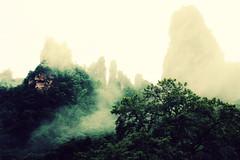 Shrouded (Meeg.E) Tags: china summer mist mountains travelling nature students beauty rain landscape natural backpacking      zhangjiajie