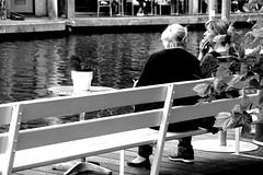 _DSC0312 (Parrasgo) Tags: bridge red dog feet hat amsterdam bike metal cheese umbrella river puente chess movimiento painter sunflower chanel paraguas bycicle violoncello