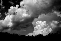 The Sky Overhead ~ Day 260(B)/365 (SeptemberRayne) Tags: road trip sky white storm black monochrome clouds ball wow dark head over silhouettes cotton puffy overhead looming