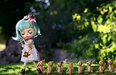 Teddy Bear's Picnic  ʕ •ᴥ•ʔ ~