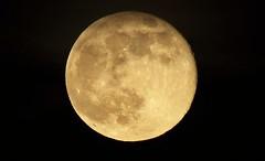 Full moon (Crystal_rivera) Tags: moon fullmoon moonrise lunar creators junemoon summermoon