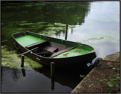 Boat Scape (Hans Kerensky) Tags: abandoned 120 6x6 germany lens boat fujifilm 100 folder reala 58 industar iskra brempt kmz schwalm hariksee plustek i opticfilm anywhitefieldtagbyflickrsspamtagbot